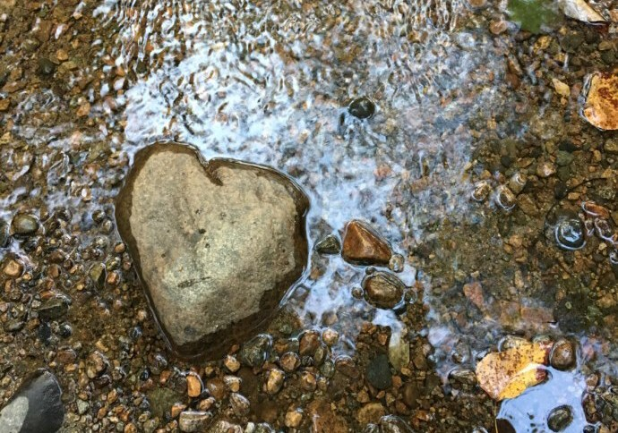 Love Remains. Photo taken by Tara McGuire at McKay Creek, North Vancouver, B.C.